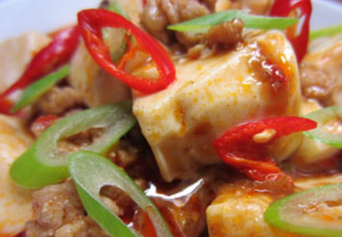 Charcoal Braised Spicy Bean Curd